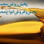 نمایندگی ایرانول